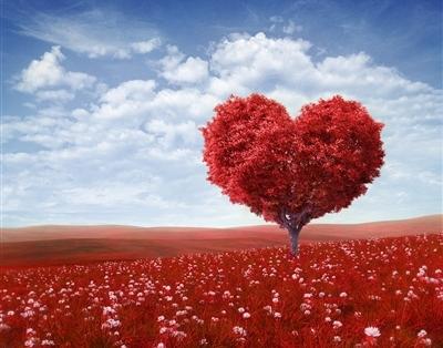 Цитаты великих о любви для валентинки. Топ-15